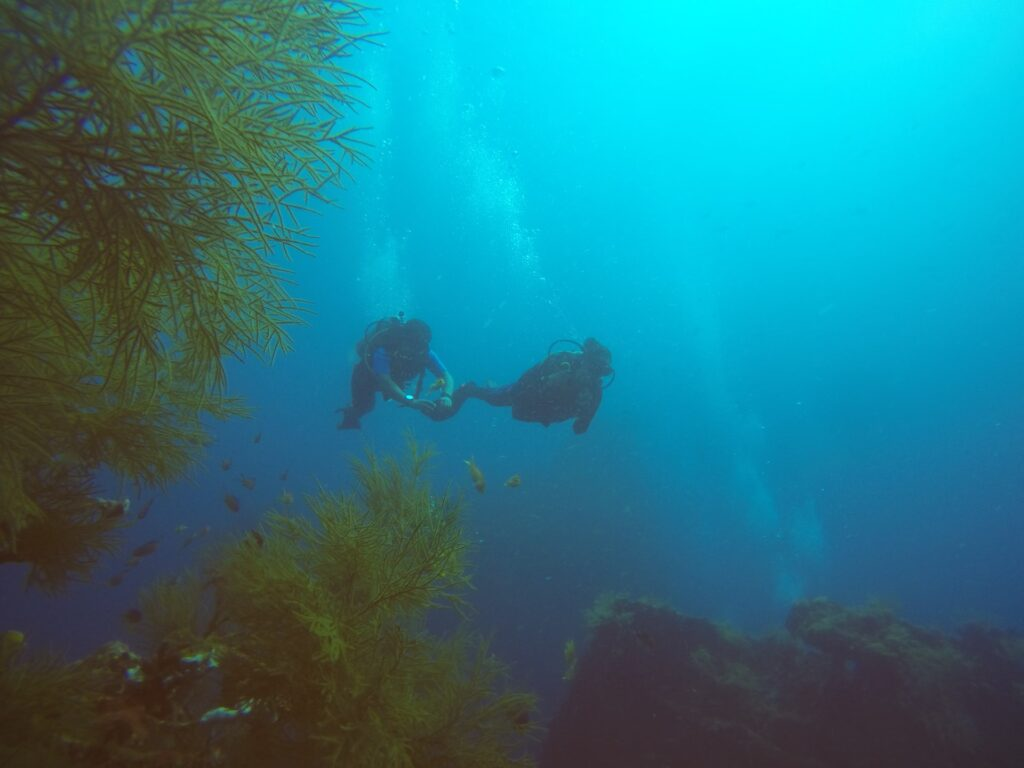 5 Amazing Reasons To Visit Andaman and Nicobar islands
